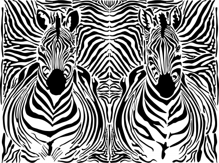 illustration pattern background zebras skins and heads Vector
