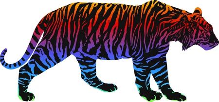 Tiger with rainbow smokescreen camouflage Vector