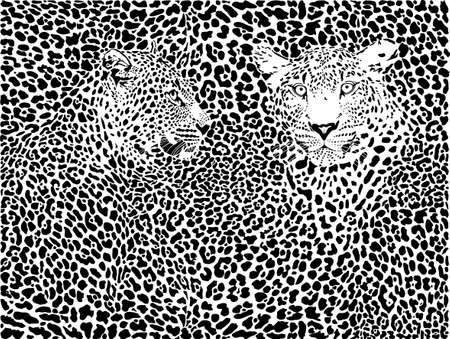 a print: illustration pattern background leopard skins and two heads Illustration