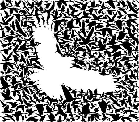 多くの鳥が空を飛んでいる鳥捕食者のシルエットを作成します