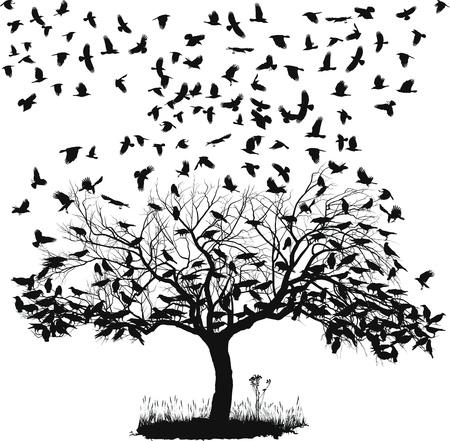 corvo imperiale: illustrazione vettoriale dei corvi sull'albero e in aria