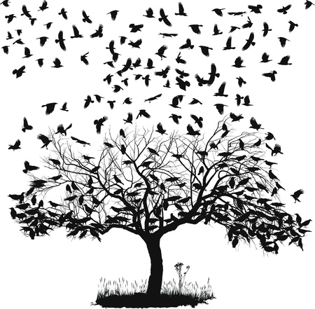 bandada de p�jaros: ilustraci�n vectorial de los cuervos en el �rbol y en el aire