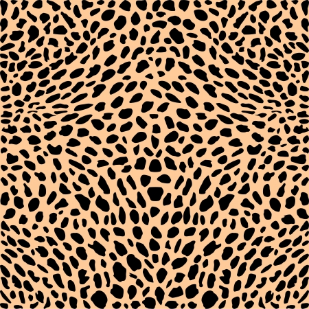vector illustration pattern background cheetah skins  Vector