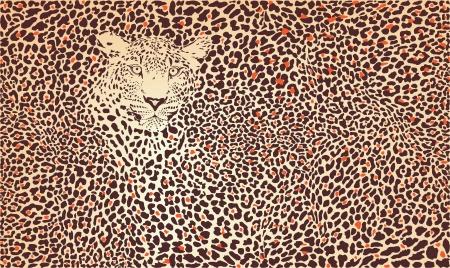 camuflaje: ilustraci�n del patr�n de fondo pieles de leopardo y la cabeza Vectores
