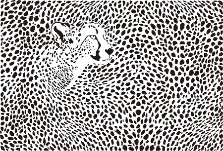 illustration background cheetah skins and heads Vector