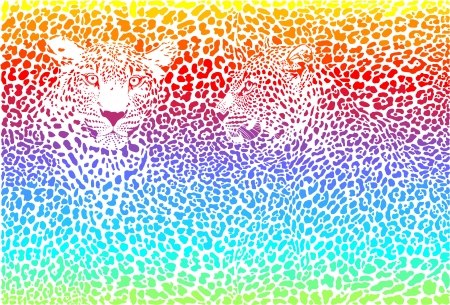 skins: rainbow illustration pattern background leopard skins and two heads