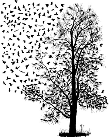 flock: illustration of the crows on the tree and in the air Illustration