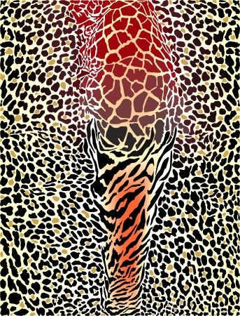 leopard:  art illustration printing wild animal pattern background Illustration