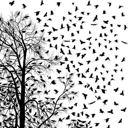 castaÑas: Ilustración bandada de cuervos sobre los árboles