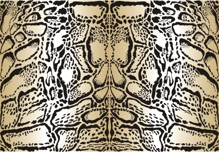 illustration pattern background skins clouded leopard Vector