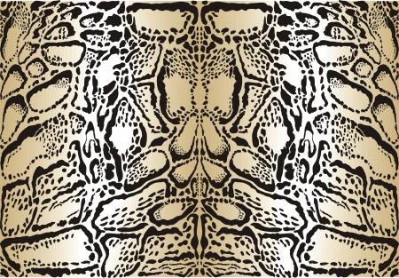 clouded leopard: illustration pattern background skins clouded leopard Illustration