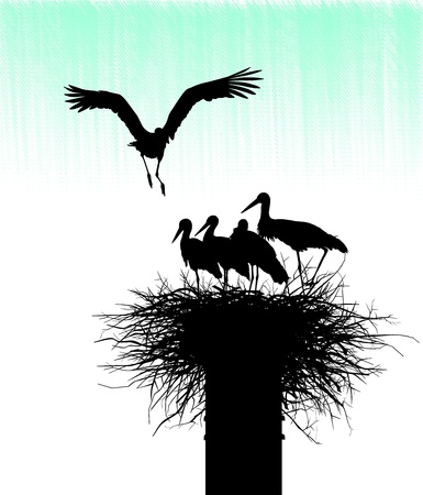 Silhouettes of storks in the nest on sky background Stock Vector - 16103538