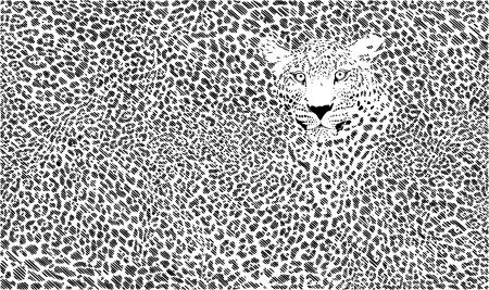 skin background illustration formed small flats Illustration