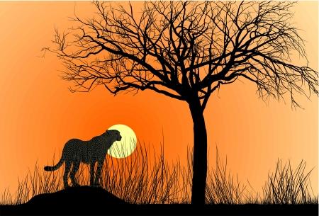 hoog gras: illustratie cheetah op termietenheuvel bij zonsondergang Stock Illustratie