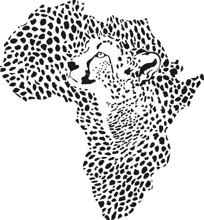 cheetah: vector illustration of Africa as a cheetah skin