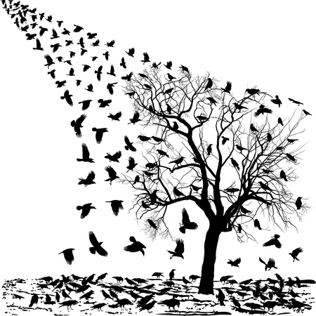 carrion: illustration of the crows on the tree and in the air Illustration