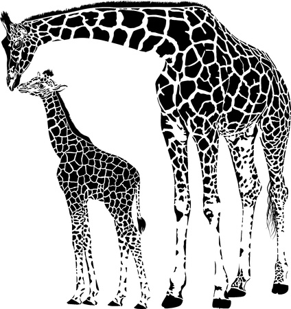 single sketch: vector illustration of mother and young giraffe