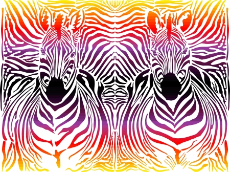 illustration abstract pattern background zebras skins and heads Illustration