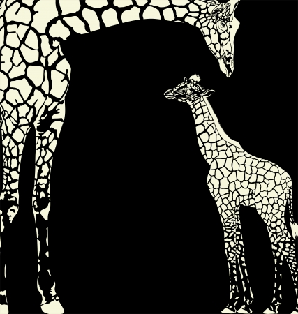 illustration of Giraffe mother with cub on a black background
