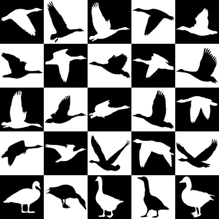 geese: illustration of geese on a background of black and white squares Illustration