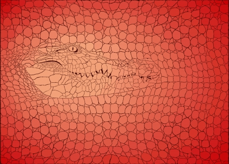Vector illustration pattern background crocodile skins and heads Vector