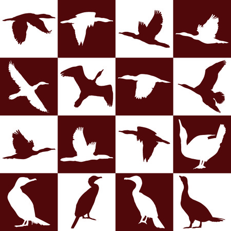 cormorants: vector illustration of cormorants on a background of brown and white squares Illustration