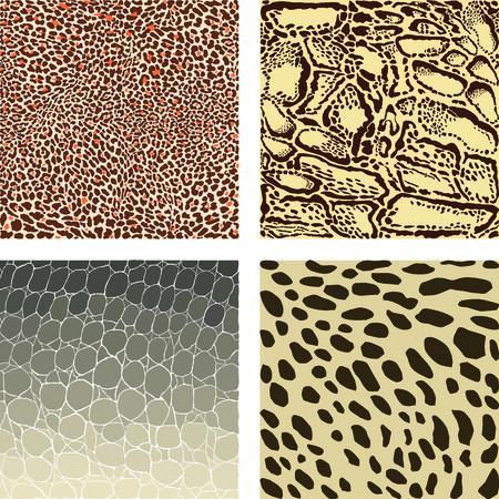 Color illustration animal pattern background