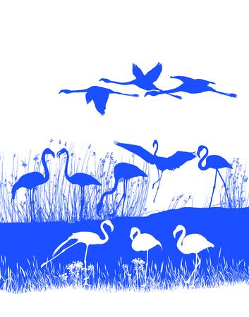 flamingi: Izolowane ilustracja stada flamingów na brzegu Ilustracja