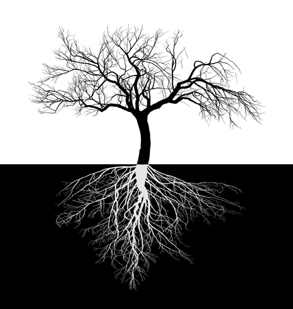 vector illustration of a leafless apple tree with roots Vectores