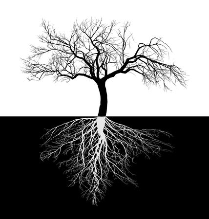 vector illustratie van een kale appelboom met wortels