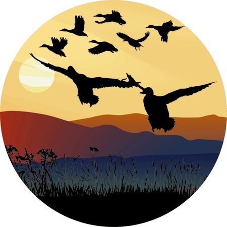 accidentado: Ilustraci�n de un arco circular de los pa�ses de volar patos salvajes