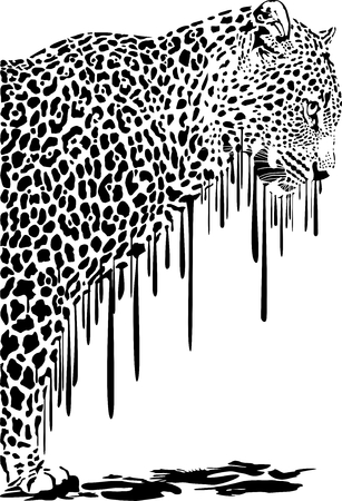 melts: Black illustration of leopard in abstract colors melts on a white background