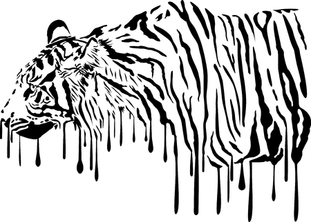 melts: Black illustration of tiger in abstract colors melts on a white background