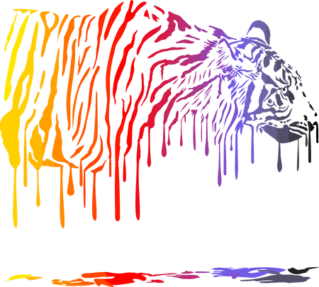 melts: Color illustration of tiger in abstract colors melts on a white background