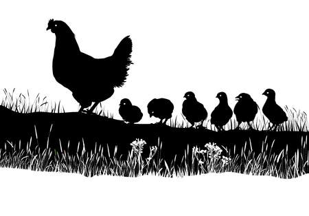 geese: art illusration vector families of Geese in the meadow