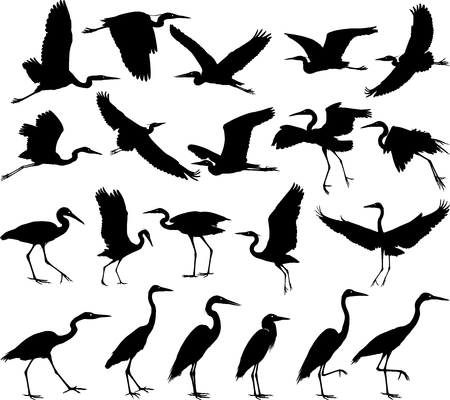 eps picture: Twenty-one vector art silhouettes herons in various positions Illustration
