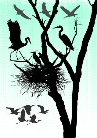 herons: vector illustration herons nest in the dry tree Illustration