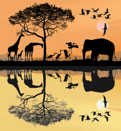 savana: illustration savana with giraffes, herons and elephant Illustration