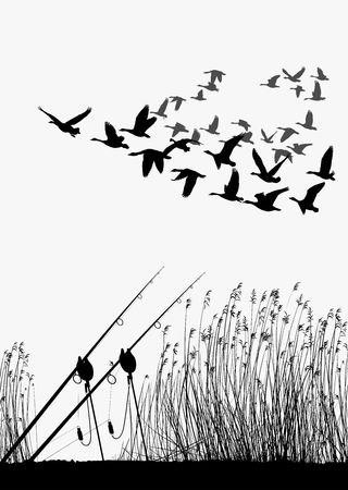Vector illustration lake shore and migrating wild geese Illustration