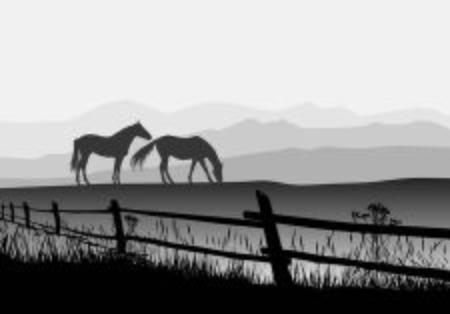 Vector Illustrator horses on meadow with fence