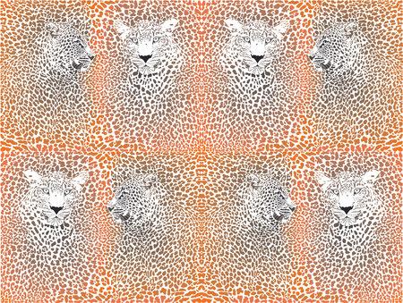 vector illustration background leopard camouflage and two heads Illusztráció