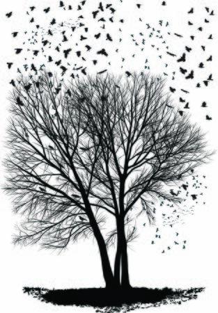 vector illustration of a herd of ravens, Poplar tree, three trees