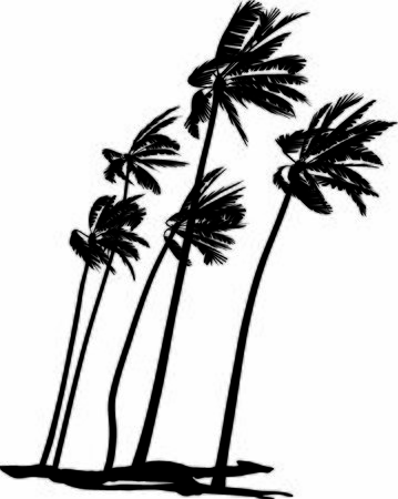 Black and white vector illustration of five palms trees
