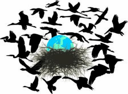 Vector Illustration Birds Rescue The Planet Earth Иллюстрация