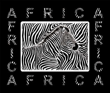 Abstract illustration black and white background with zebra skin