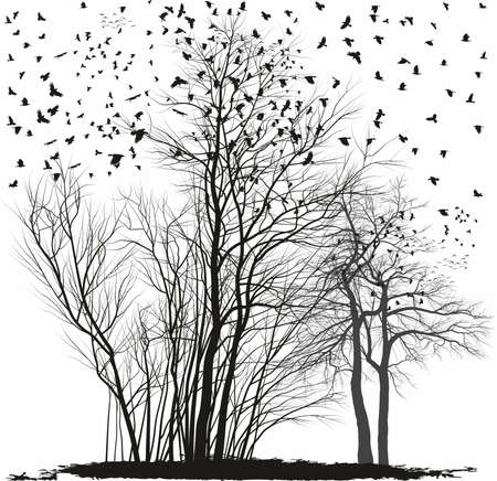 vector illustration of a herd of ravens trees on a group of acacia trees