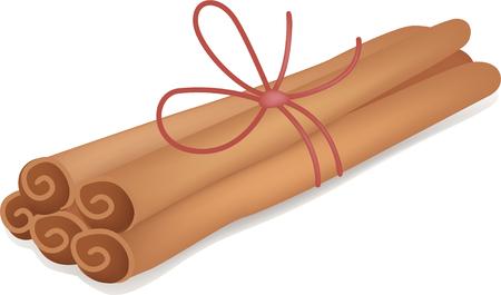 food staple: Cinnamon Illustration