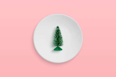 Small Christmas tree in a plate. Minimal Christmas celebration concept