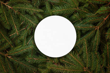 Blank white circle-shaped paper on christmas tree branches 版權商用圖片