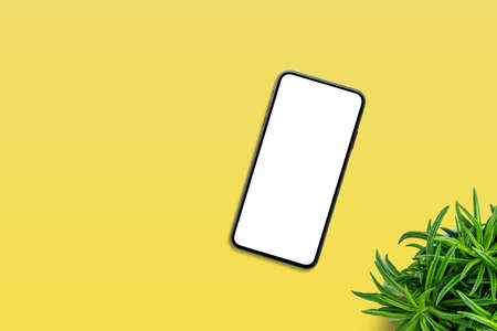 Phone on yellow table with plant beside. Top view, flat lay composition with copy space. Isolated screen for app or web site design promotion